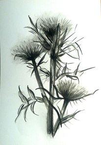 Weiß, Tuschmalerei, Pflanzen, Tuschezeichnung