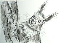 Wald, Tiere, Zeichnungen tiere, Natur