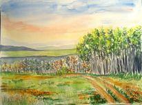 Baum, Aquarellmalerei, Birken, Aquarell landschaften