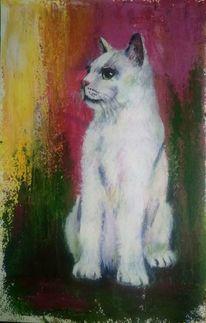 Katze, Acrylmalerei, Spachteltechnik, Rosa