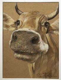 Zeichnung, Natur, Kuh, Allgäuer