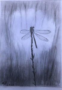 Bleistiftzeichnung, Libelle, Tiere, Zeichnungen