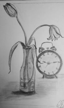 Zeit, Vergänglichkeit, Tulpen, Zeichnungen