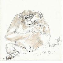 Aquarellmalerei, Leipziger zoo, Zeichnung, Martha krug