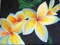 Acrylmalerei, Blumen, Frangipani, Malerei