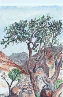 Aquarellmalerei, Landschaft, Weihrauchbaum, Aquarell