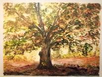 Baum, Licht, Herbst, Aquarell