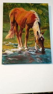 Wiese, Pferde, Wasser, Malerei