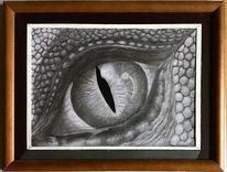 Augen, Drache, Zeichnung, Schuppen