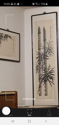 Pinnwand, Bambus, Höhe