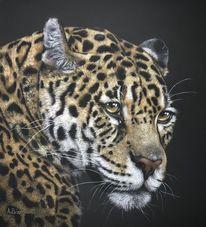 Jaguar, Leopard, Pastellmalerei, Tierportrait