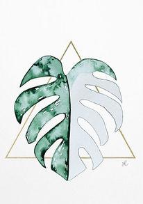 Monstera panaschiert, Monstera leaf, Malen, Monstera