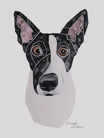 Hundeportrait, Auftragsarbeit, Malen, Hütehund