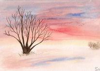 Sonnenuntergang, Winter, Natur, Landschaft