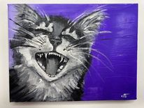 Offenes maul, Violett, Katze, Katzenfell