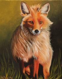 Tiere, Ölmalerei, Fuchs, Wild