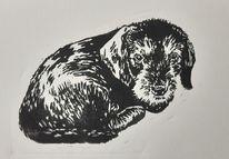 Rauhaardackel, Linolschnitt, Welpe, Hund
