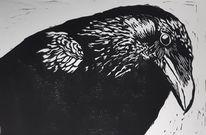 Vogel, Tiere, Linolschnitt, Rabe