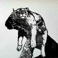 Tiere, Löwin, Linolschnitt, Siesta