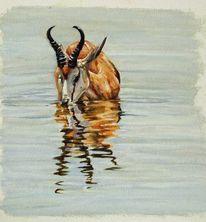 Malerei, Portrait, Ölmalerei, Gazelle