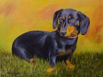 Vierbeiner, Acrylmalerei, Dackel, Hund