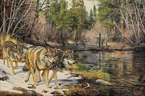 Acrylmalerei, Wolf, Tierwelt, Malerei