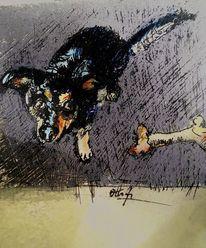 Sehnsucht, Hund, Rahmen, Knochen