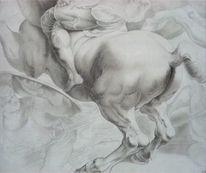 Pferde, Studie, Peter paul rubens, Barock