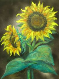 Ölmalerei, Pflanzen, Blumen, Sonnenblumen