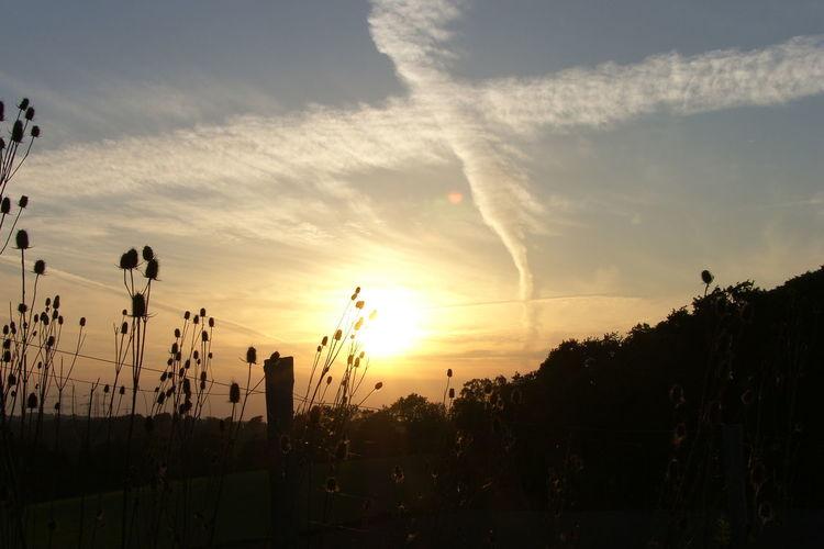 Natur, Wolken, Zaun, Himmel, Wolkenschöne, Landschaft