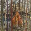 Frühling, Schattig, Wald, Zeichnungen