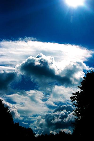Pflanzen, Luft, Wolken, Warm, Himmel, Sonne
