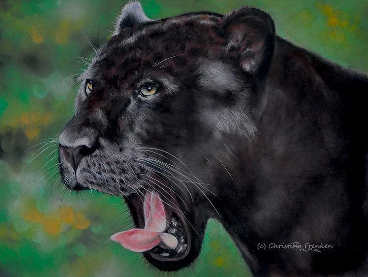 Beast, Tierwelt, Malerei, Zoo, Jaguar, Pastellmalerei