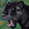 Beast, Tierwelt, Malerei, Zoo