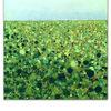 Grün, Dubon, Acrylmalerei, Malerei