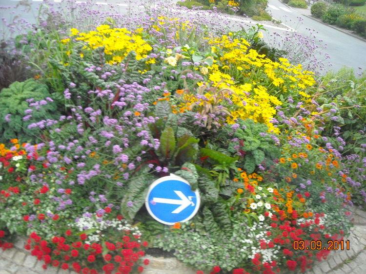 Reise, Susannegottschalk, Frankreich, Bretagne, Straße, Normandie