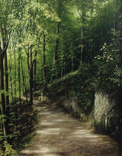 Felsen, Wald, Weg, Natur, Baum, Naturalismus