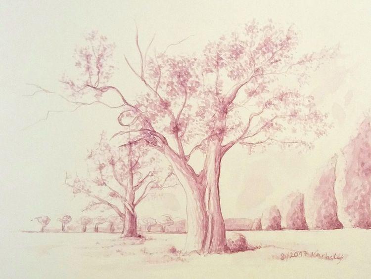 Baum, Tuschmalerei, Tuschezeichnung, Landschaft, Skizze, Natur