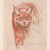 Tiefdruck, Tiere, Katze, Farben