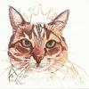 Katze, Skizze, Tuschmalerei, Tierportrait