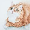 Auftragszeichnung, Tuschmalerei, Katze, Tierzeichnung