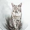 Katze, Tierportrait, Schwarz, Tunnel