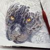 Workinprogress, Zeichung, Wip, Tierzeichnung