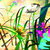 3d, Grafik, Blumen, Farben