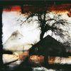 Gehöft, Baum, Schatten, Digitale kunst