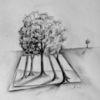 Bleistiftzeichnung, Baum, Zeichnungen,