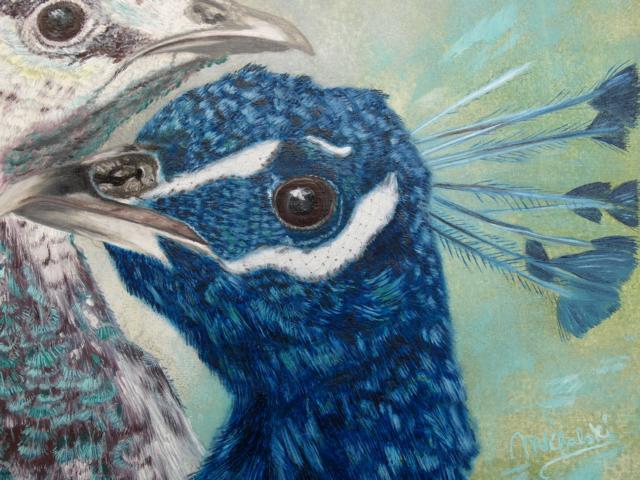 Hühnervogel, Vogel, Pfau, Malerei, Tiere