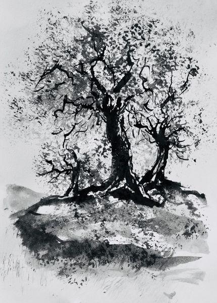 Landschaft, Tuschmalerei, Olivenbaum, Zeichnungen