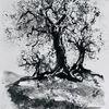 Tuschmalerei, Olivenbaum, Landschaft, Zeichnungen