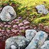 Pflanzen, Stein, Flechten, Malerei